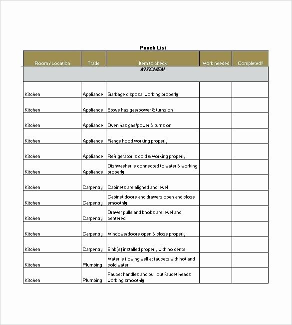 Punch List Template Excel Beautiful Punch List Template 8 Free Sample Example format Download