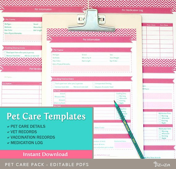 Puppy Health Guarantee Template New 24 Of Healthy Dogs Template