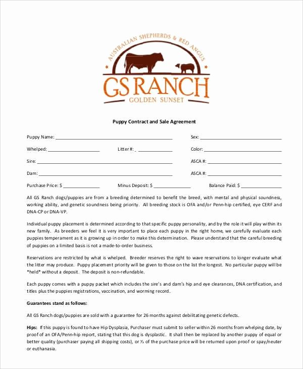 Puppy Health Guarantee Template Unique Puppy Sales Contract Design Templates