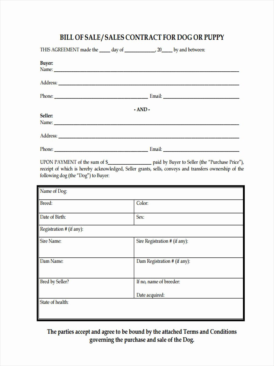 Puppy Sale Contract Template Elegant Dog Bill Of Sale form 5 Free Documents In Pdf