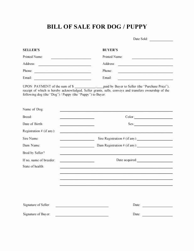 Puppy Sale Contract Template Fresh Puppy Bill Sale