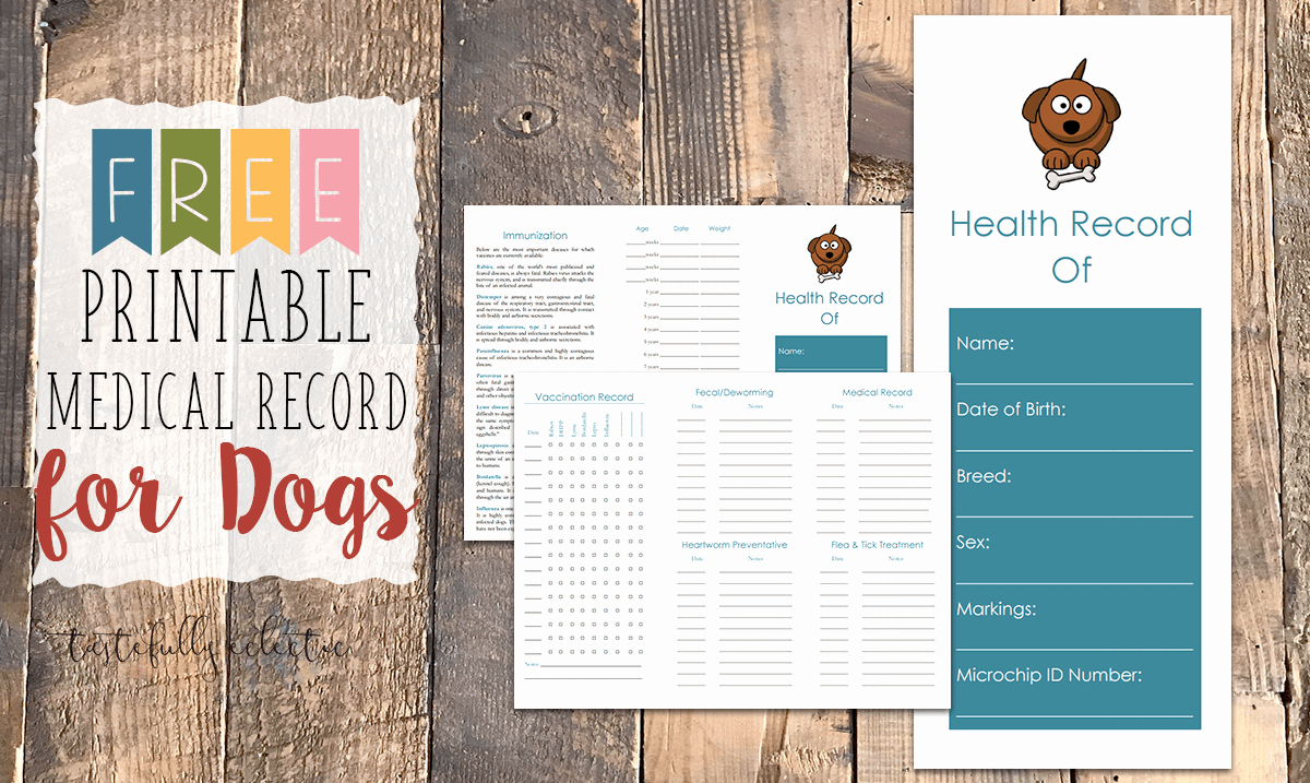 Puppy Shot Record Template Elegant Free Printable Medical Record for Dogs Tastefully Eclectic