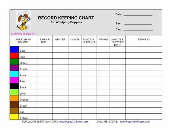 Puppy Shot Record Template New Record Keeping Charts C&j S Pup Haven Pinterest