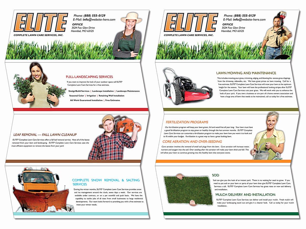 Quad Fold Brochure Template Lovely Brochure Samples Pics Brochure Quad Fold Templates