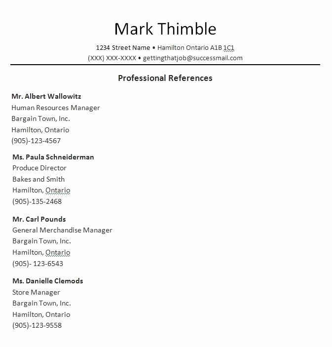 Reference List Template Word Beautiful Professional References Template Beepmunk