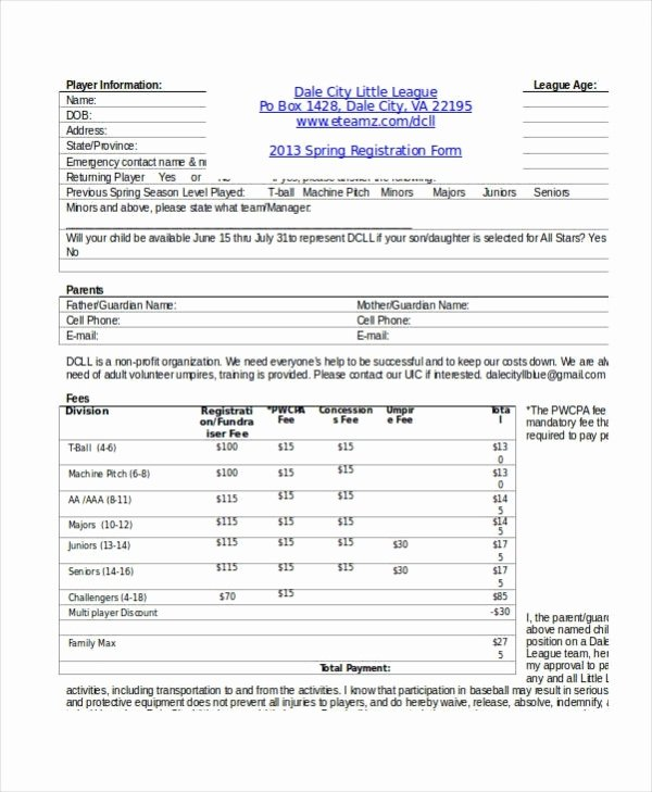 Registration forms Template Word Lovely Registration form Template 9 Free Pdf Word Documents