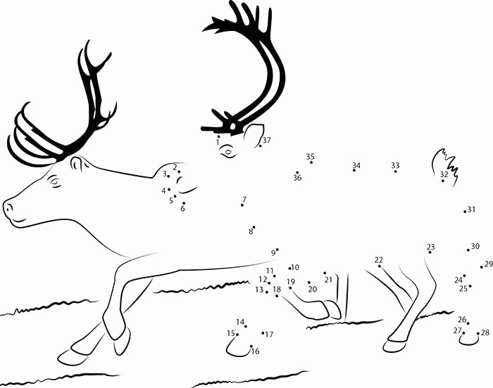 Reindeer Cut Out Template New Free Printable Coloring Pages Reindeer Page Regarding