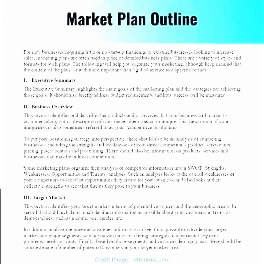 Restaurant Marketing Plan Template Inspirational Digital Marketing Plan Template Free Sample Example format
