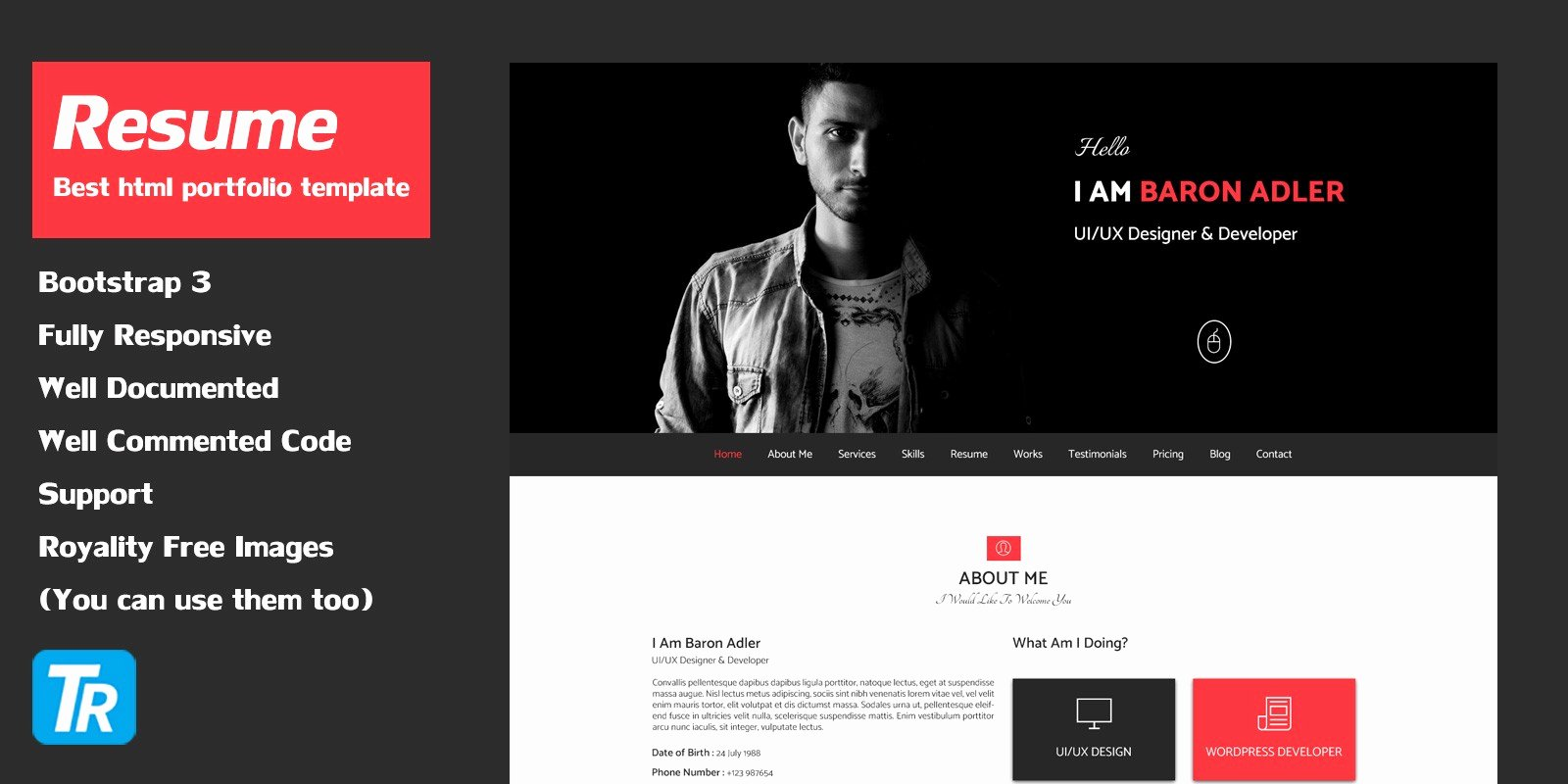 Resume Website Template Free Unique Resume Personal Portfolio Web Template