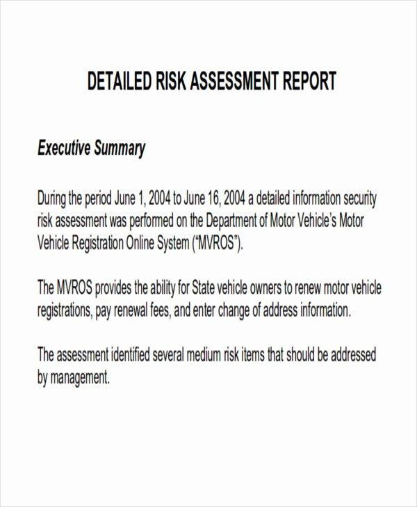 Risk assessment Report Template Lovely 10 assessment Report format Samples Docs Word Pages Pdf