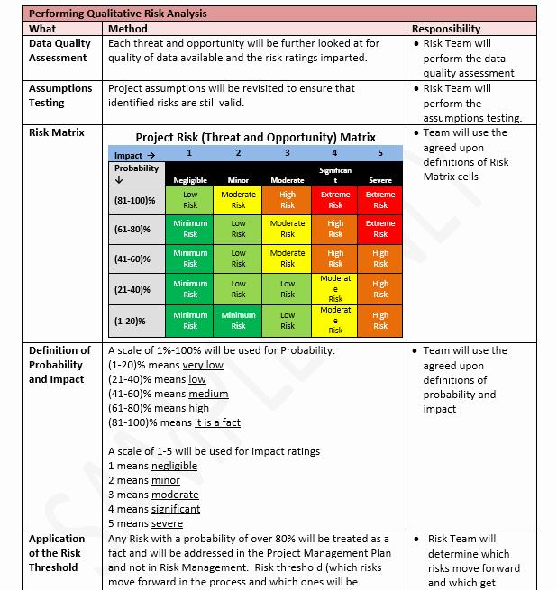 Risk Management Plan Template Elegant Risk Management Plan Template