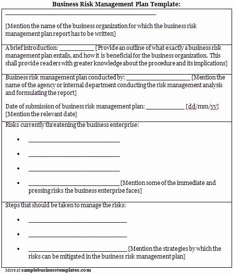 Risk Management Plan Template Unique Risk Management Plan Template