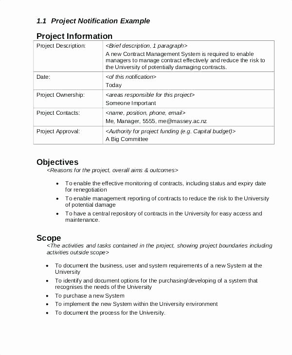 Risk Management Report Template Awesome Project Risk Report Template Risk Review Report Template