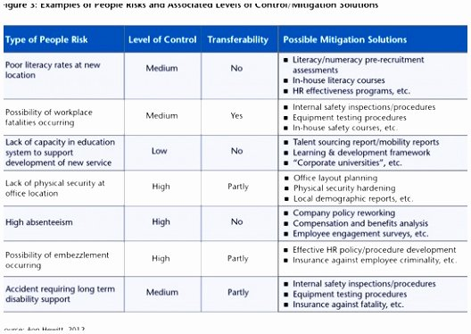 sample risk mitigation plan template