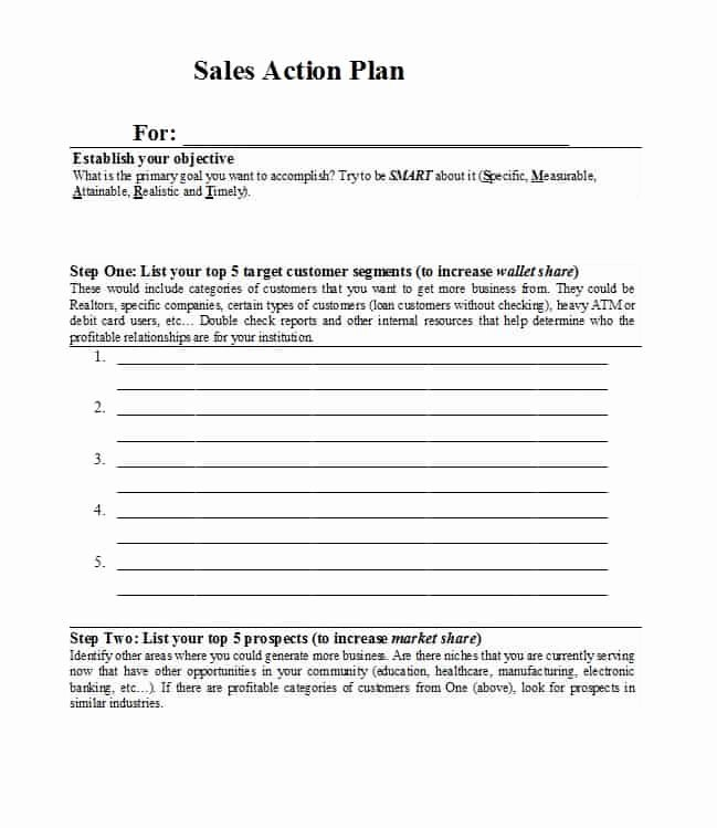 Sales Account Plan Template Elegant 32 Sales Plan & Sales Strategy Templates [word & Excel]