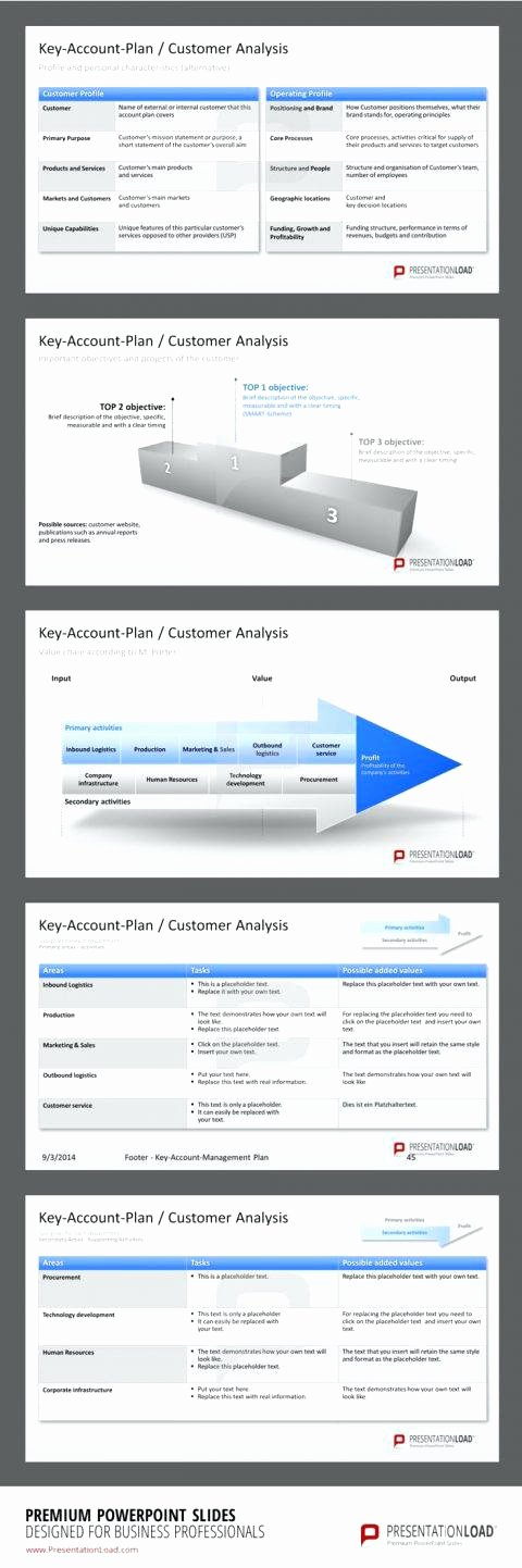 Sales Account Plan Template Luxury Sales Account Plan Template Ppt – Golove