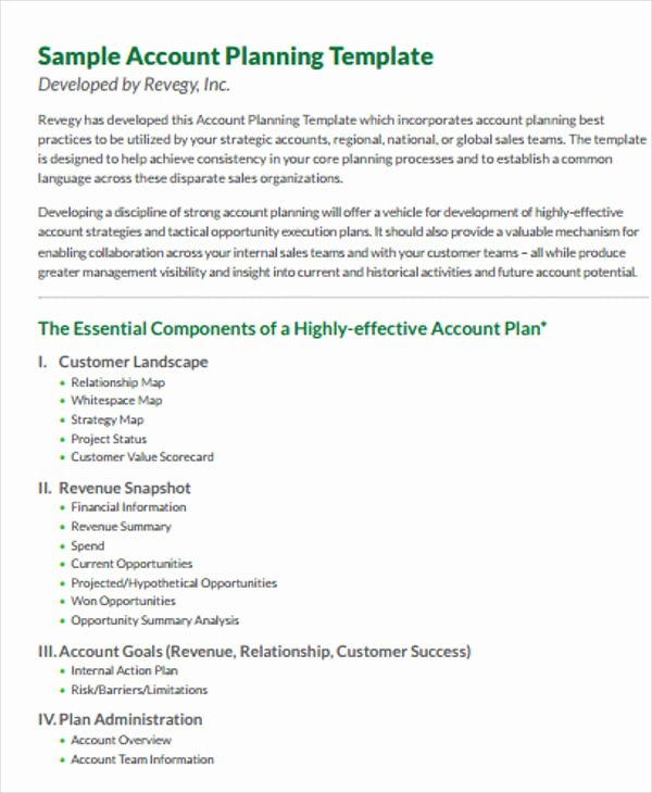 Sales Account Plan Template Unique 42 Management Plan Templates Pdf Word