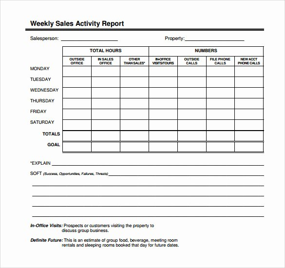 Sales Activity Report Template Best Of 14 Sales Call Report Samples