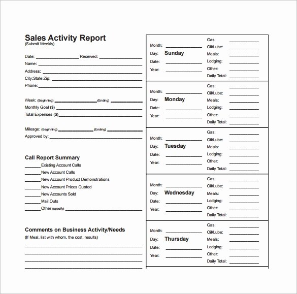 Sales Activity Report Template Elegant 13 Sales Report Templates