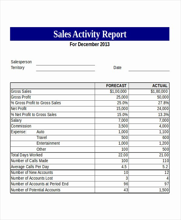 Sales Activity Report Template Inspirational 14 Sales Report Example & Samples Pdf Word Pages
