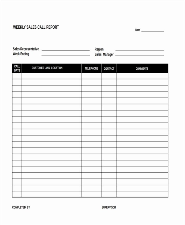 Sales Call Plan Template New 15 Sales Report form Templates