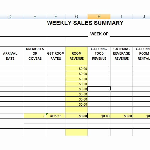 Sales Call Planner Template Elegant Hotel Sales Summary Excel Pinterest