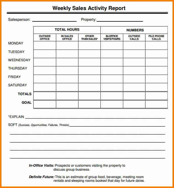 Sales Call Report Template Inspirational Sales Report Template