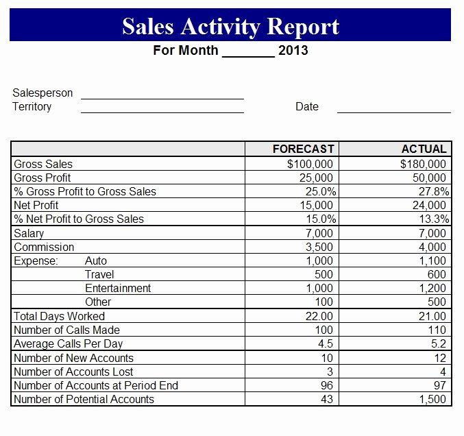 Sales Calls Report Template Elegant 2013 Sales Activity Report Template Sample