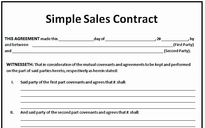 Sales Contract Template Word Elegant Simple Sales Contract