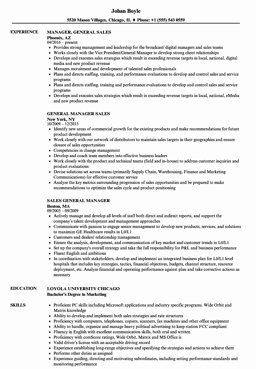 Sales Manager Resume Template Awesome General Manager Sales Resume Samples