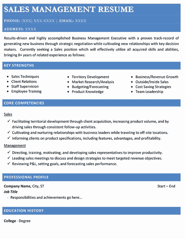 Sales Manager Resume Template Awesome Resume Samples