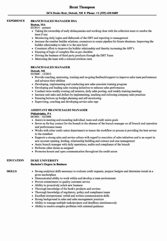 Sales Manager Resume Template Elegant Branch Sales Manager Resume Samples