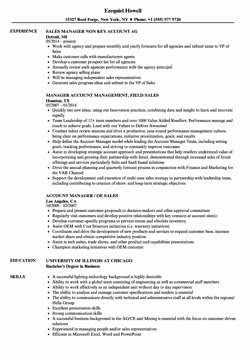 Sales Manager Resume Template Luxury Sales Account Manager Sales Manager Resume Samples