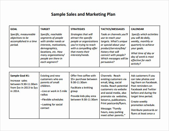 Sales Plan Template Word Best Of Free Sales Plan Templates Free Printables Word Excel