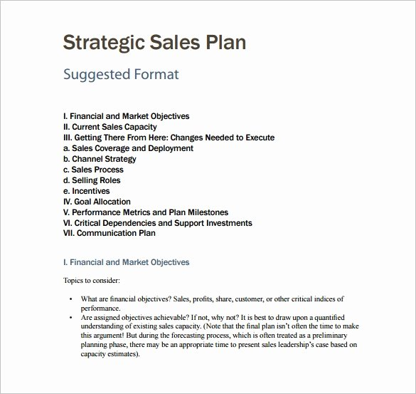 Sales Plan Template Word Unique 7 Sales Plan Template Pdf Doc