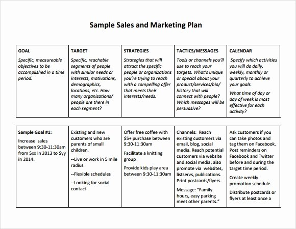Sales Planning Template Excel Unique Sales Plan Template