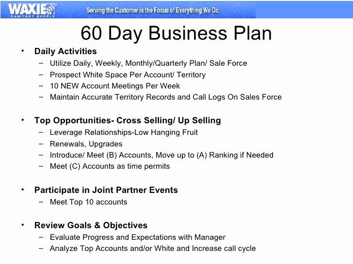 Sales Territory Plan Template Elegant 30 60 90 Business Plan