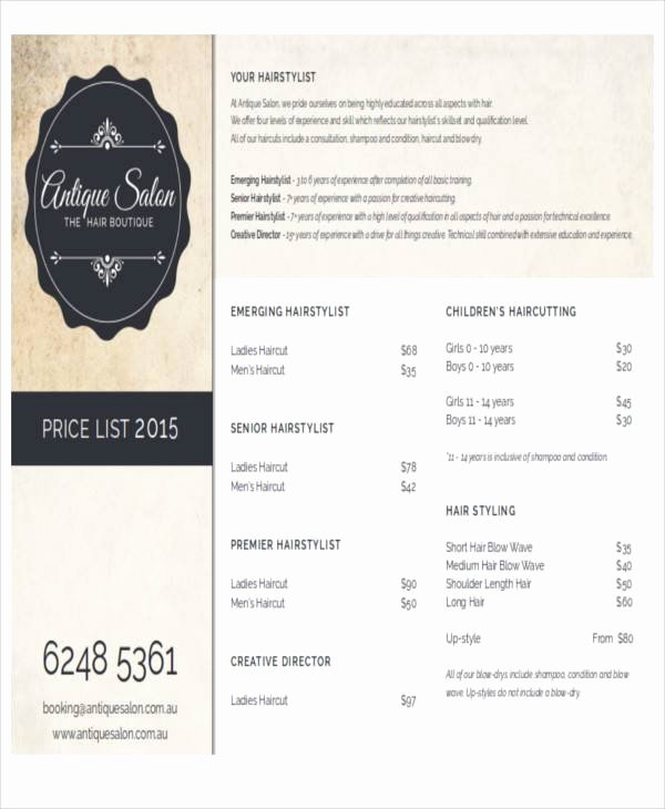 Salon Price List Template Elegant 9 Salon Price List Samples