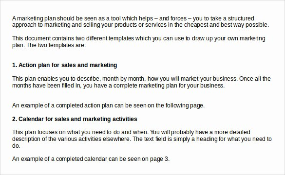 Sample Action Plan Template Beautiful Sample Sales Action Plan Template 7 Free Documents In