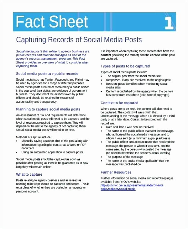 Sample Fact Sheet Template Awesome Personal Information Template Easy Fact Sheet form Sample
