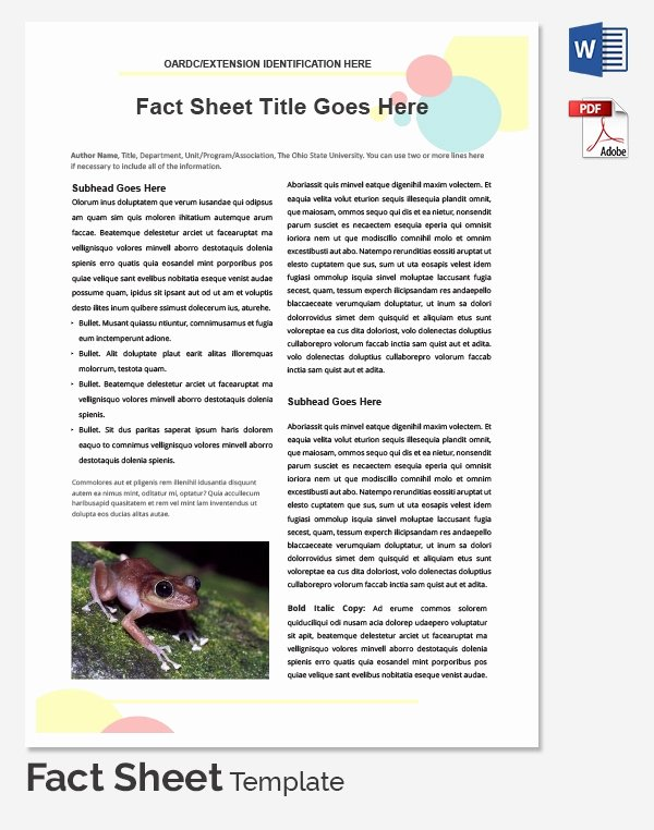 Sample Fact Sheet Template Best Of Fact Sheet Template 32 Free Word Pdf Documents