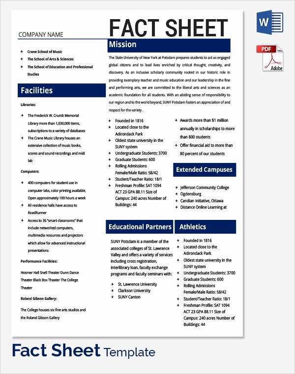 Sample Fact Sheet Template Luxury Sample Fact Sheet Template 21 Free Download Documents