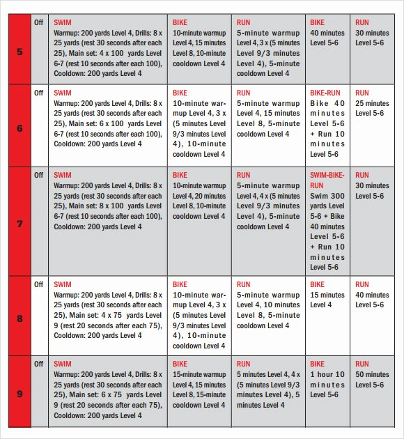 Sample Training Plan Template Best Of 8 Training Calendar Templates – Free Samples Examples
