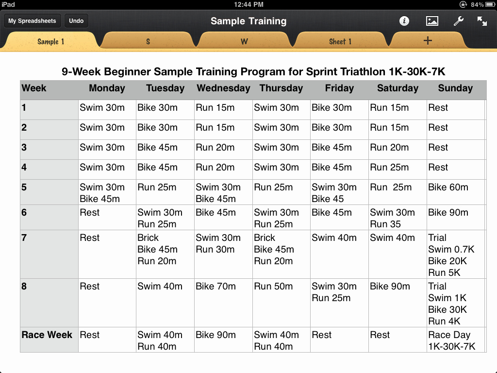 Sample Training Plan Template Elegant Pinoy Triathlon Sample Training Plan with Regard to