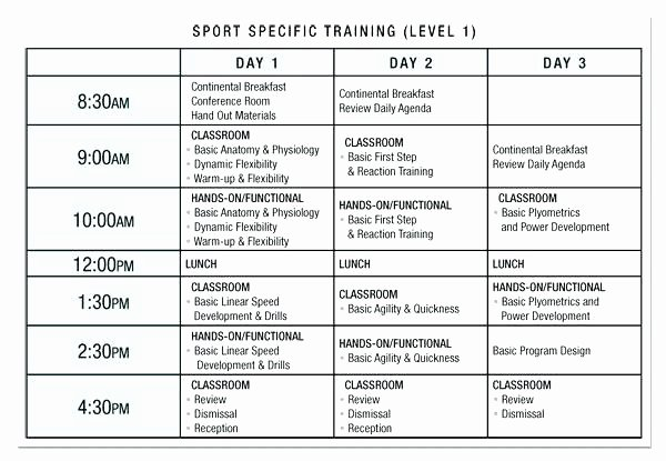 Sample Training Plan Template New Exercise Plan Template – Chaseevents