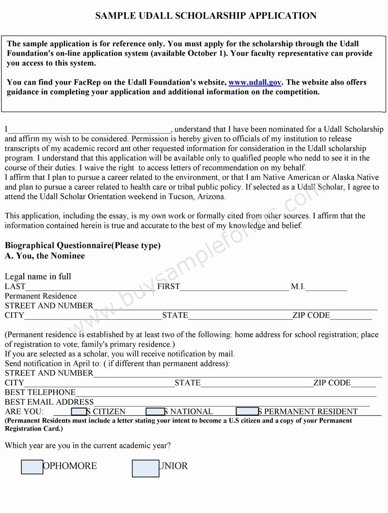 Scholarship Application Template Word Lovely Scholarship Application format