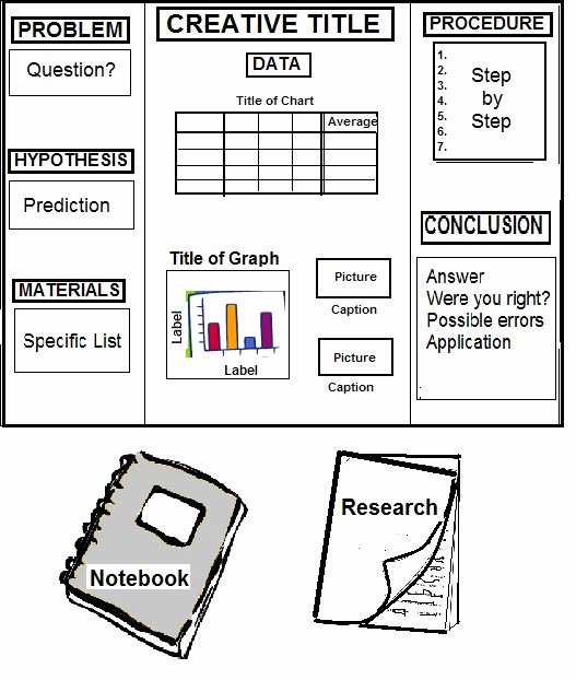 Science Fair Project Template Fresh 1000 Images About Science Fair On Pinterest
