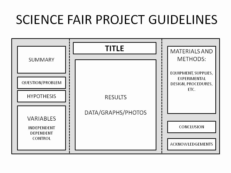 Science Fair Project Template Luxury Backboard Basics for Science Fair Projects