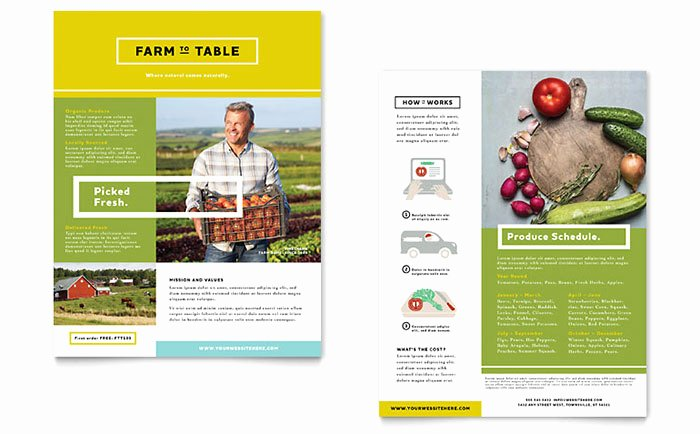 Sell Sheet Template Free Awesome organic Food Datasheet Template Design