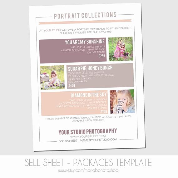 Sell Sheet Template Free Lovely Sell Sheet Collections or Packages Pricing Template